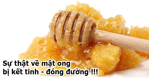 Su-that-ve-mat-ong-bi-ket-tinh-dong-duong