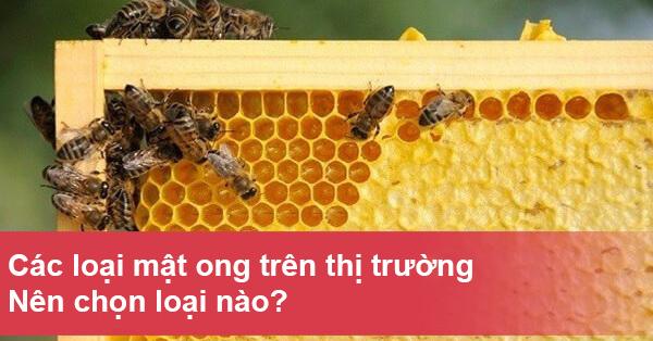 Các loại mật ong trên thị trường hiện nay